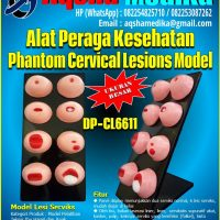 "Phantom Lesi Serviks Model DP-CL6611 ""Aqsha Medika"""